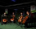 Die Vier EvangCellisten bei ihrem Konzert